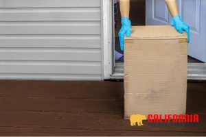 The Ins and Outs of Package Theft