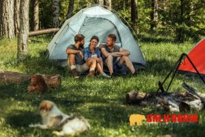 Tips for Staying Safe While Camping