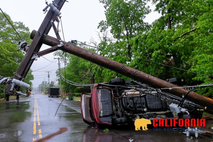 Down Powerline Safety Tips